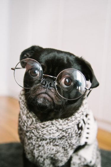 目が疲れる人必見!ブルーライトカットメガネは本当に効果があるのか?って話