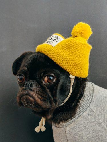 【定番】アメカジの帽子おすすめ10選!こだわりの帽子を被りませんか?